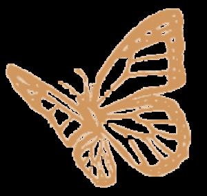 logo_crisálida